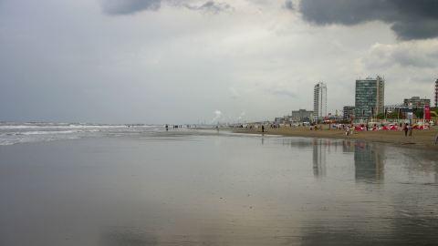 Bernsteinsuche in Wijk aan Zee