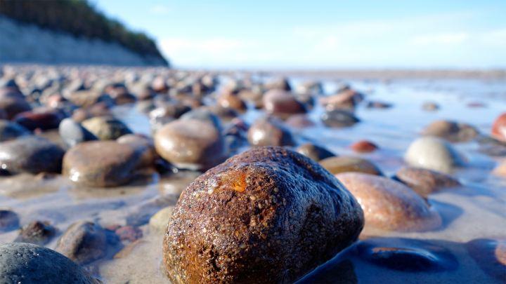 Bernstein in Braunkohlesanden In der Ostsee